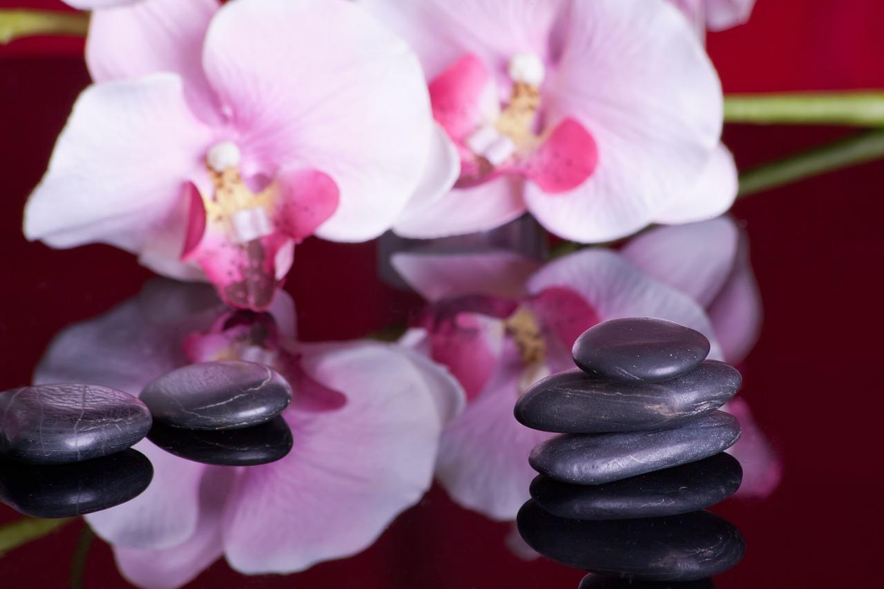 massage-599476_1280